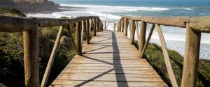 contact form walkway to a desert beach in a sunny day