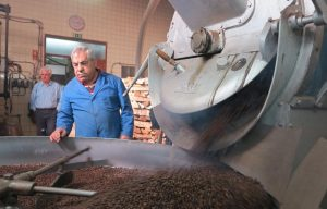 craftsman waiting for the coffee to be roasted in the firewood oven inside flor da selva factory in lisbon, portugal